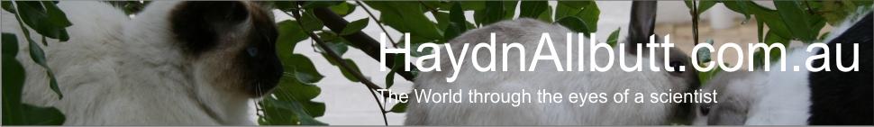 HaydnAllbutt.com.au header image 2