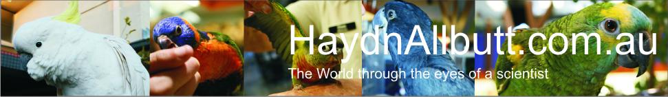 HaydnAllbutt.com.au header image 3